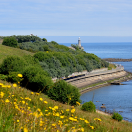 summer breeze by Paul Pirie - Landscapes Mountains & Hills ( hills, bushes, sunny, pier, sea, monument, flowers, coast, river )