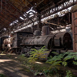 House of the dead Trains by Michael Röll - Buildings & Architecture Decaying & Abandoned ( ue decay urbex derelict abandoned,  )