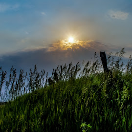 by Amber Olsen - Landscapes Weather ( iowa, grass, interesting, storms, sun )