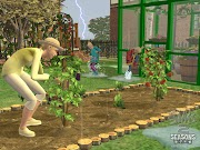 The Sims 2 Seasons