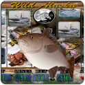 Wild Alaska Vegas Slot Machine icon