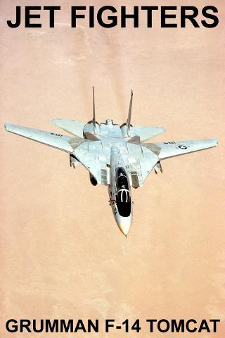 Grumman F-14 Tomcat FREE