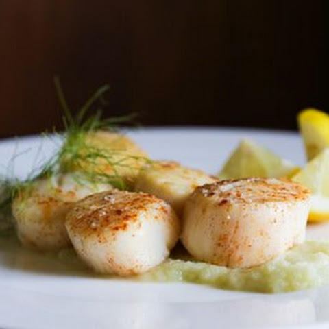 Pan Seared Scallops with Fennel Purée