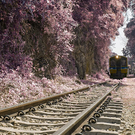 Death railway by Win Htun - Transportation Trains