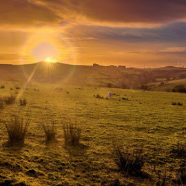 Welsh Hills Sunset.jpg by Ian Yates ヅ - Landscapes Prairies, Meadows & Fields