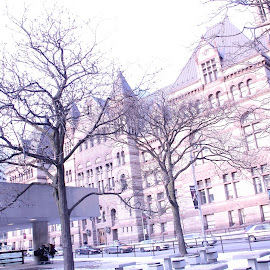 Toronto Old City Hall by Sri Lal Surana - Buildings & Architecture Architectural Detail ( toronto )