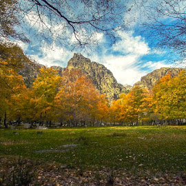 by João Vaz Rico - Landscapes Mountains & Hills