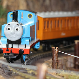 by Linda Pickrell - Artistic Objects Toys ( linda pickrell, toy, toys, train, close up, thomas, closeup,  )