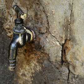 Old Water Tap by Prasanta Das - Artistic Objects Other Objects ( water, old, tap )