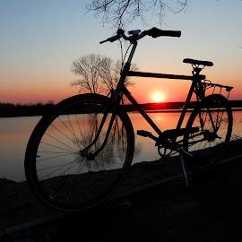 My custom bike.. by Željko Salai - Transportation Bicycles