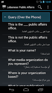 Lebanese Public Affairs - screenshot