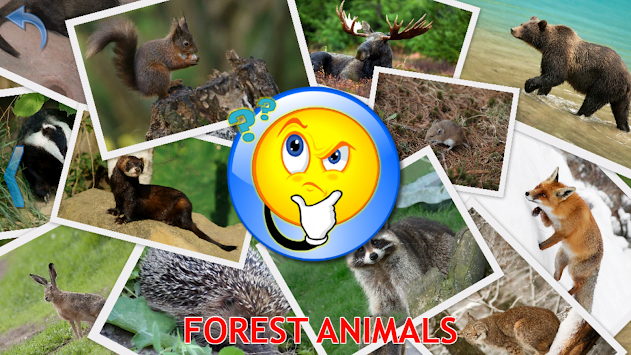 Animals For Kids - Flashcards APK screenshot thumbnail 13