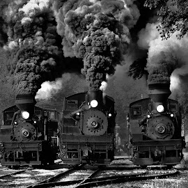 Train Race in BW by Chuck  Gordon  - Black & White Objects & Still Life ( cass, railroad, shay, rail, bw, three, train, smoke, steam )