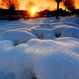 First Snow by John Phielix - City,  Street & Park  Street Scenes ( cold, sunset, street, snow, city )