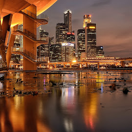 City Nightscape by Kristianus Setyawan - City,  Street & Park  Night ( skyline, reflection, city scene, waterscape, artscience museum, cityscape, landscape, city reflection, marina bay, nightscape, city, city landscape, cbd, night photography, landscape photography, city lights, pond, reflection on pond, city skyline, skyscape )