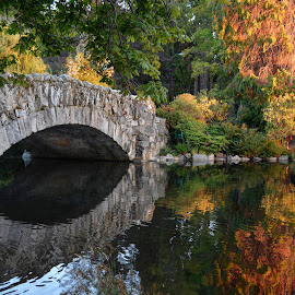 The Bridge by Keith Boone - City,  Street & Park  City Parks ( parks, beacon hill park, reflections, victoria, bridge )
