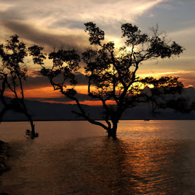 by MasHeru Sucahyono - Landscapes Sunsets & Sunrises