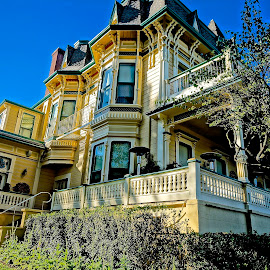 Healdsburg Beauty by Barbara Brock - Buildings & Architecture Homes ( victorian house, ornate architecture, luxury house, new victorian, yellow house )