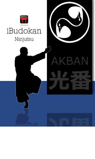 Ninjutsu Throwing
