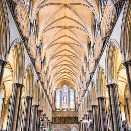 Salisbury Cathedral by Tiong Ghee Tan - Buildings & Architecture Places of Worship ( salisbury, cathedral, travel, photography,  )