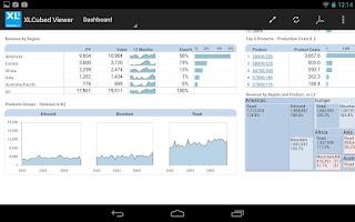Screenshot of XLCubed Report Viewer