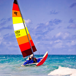Sail Away by Sandy Friedkin - Transportation Boats (  )