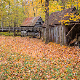Dillinger Grist Mill by Sandy Friedkin - Buildings & Architecture Decaying & Abandoned ( mill, grist, flour, fall )