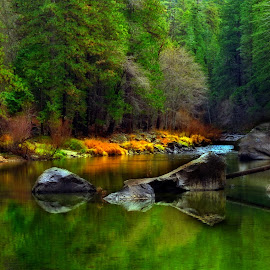 Autumn on the Merced. Yosemite National Park, Ca. by Floyd Hopper - Landscapes Prairies, Meadows & Fields ( yosemite, autumn, merced river, artistic autumn scenes, orton effect )
