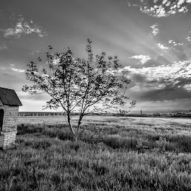 Slavonian plains by Eseker RI - Landscapes Prairies, Meadows & Fields (  )