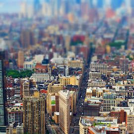 New York Lego City by Lukas Proszowski - City,  Street & Park  Vistas ( tilt-shift, landmark, building, skyline, street, nyc, usa, city )