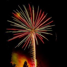 fireworks  by Miguel Caparica - News & Events Entertainment