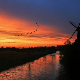 Sunset Flight by Pieter Arnolli - Landscapes Sunsets & Sunrises ( flight, mill, europe, sunset, germany, travel, birds )