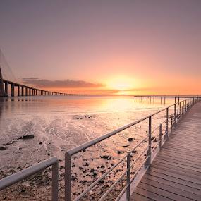 To the light... by Rui Catarino - Landscapes Sunsets & Sunrises ( parque tejo, rio tejo, ponte vasco da gama, bridge, lisboa, watherscape, river )