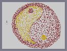 Thumbnail of the map 'Yin and Yang (edit)'