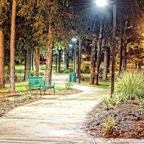 Walking Path by Jon Cody - City,  Street & Park  City Parks ( bench, park, uwf, path, night,  )