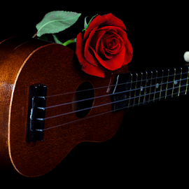 by Dipali S - Artistic Objects Musical Instruments ( ukelele, love, music, sentiment, rose, instrument )