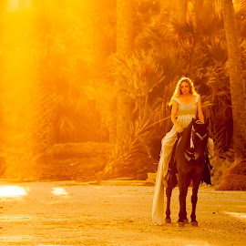 bride on horseback by John Wollwerth - Wedding Bride ( person, relax, silhouette, beach, recreation, nature, woman, motion, bareback, black, mare, orange, dream, forest, equestrian, horseback, formal, vacation, dress, trees, fast, ride, gallop, queen, horse, one, ocean, landscape, run, panorama, rider, girl, evening, activity, sunbeam, animal, water, sand, speed, beautiful, sea, sport, scenic, morning, back-light, princess, sunset, outdoor, sunrise, arabian )