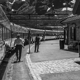 Myrdal Trainstation by Johannes Mikkelsen - Transportation Trains ( myrdal, reflection, mountains, hordaland, lively, station, reflections, train, glow, alive, people )