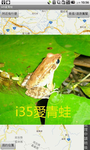 i35愛青蛙