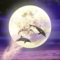 Moonlit Night icon