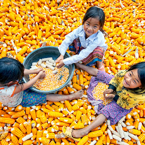Children Country by Kenji Le - Babies & Children Children Candids ( children, vietnam, kids, people, corn,  )