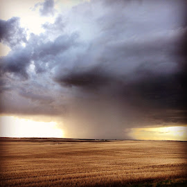 Storm clouds  by Lane Dykins - Landscapes Weather ( field, wheat, countryside, clouds, storm, rain, country )