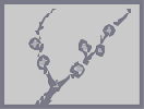 Thumbnail of the map 'ヤナギ'