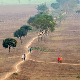 Beauty of Nature by Topu Saha - Landscapes Travel ( field, bangladesh, nature, beautiful, beauty, savar, dhaka )