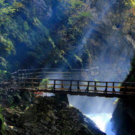 Vintgar Gorge Slovenia by Miro Zalokar - Landscapes Waterscapes