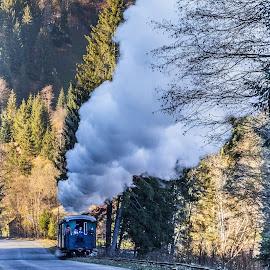 Cel mai lung tren...Hutulca! by Sveduneac Dorin Lucian - Transportation Trains