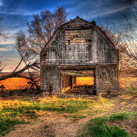 Final Harvest by John Larson - Landscapes Prairies, Meadows & Fields ( clouds, field, sky, barn, grass, trees )