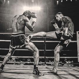 Romello vs Valdemar from Phoenix Fight Night - Round 4 by Daniel Rose - Sports & Fitness Boxing ( fight, pain, sport, boxing, phoenix,  )
