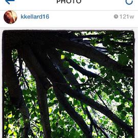 by Kylie Kellard - Instagram & Mobile Instagram