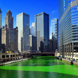 St. Patrick's Day from Chicago by Tricia Scott - City,  Street & Park  Street Scenes ( water, skyline, building, skyscraper, building shadow, chicago, st patrick's day, river, city )